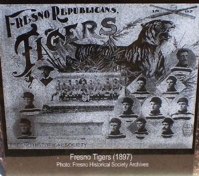 Fresno Republican Tigers 1897 image. Click for full size.