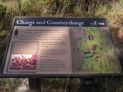 Charge and Countercharge Marker image. Click for full size.