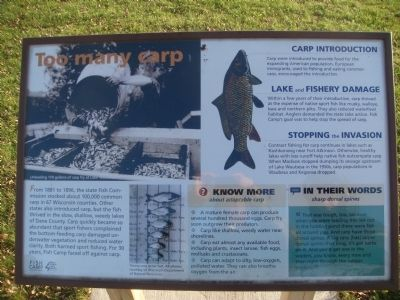 Too many carp Marker image. Click for full size.