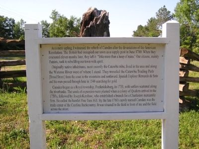The Camden Oak Marker image. Click for full size.