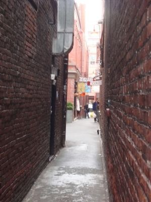 Fan Tan Alley, Victoria's narrowest alley image. Click for full size.