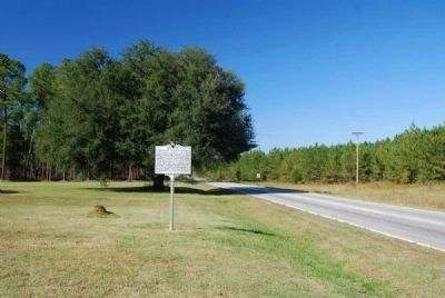 Belfast Plantation Marker<br>Front, Looking North Along SC 56 image. Click for full size.