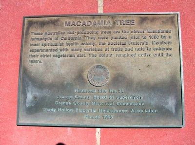 Macadamia Tree Marker image. Click for full size.