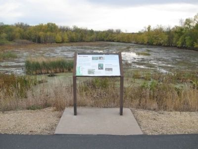 River Habitats Marker image. Click for full size.