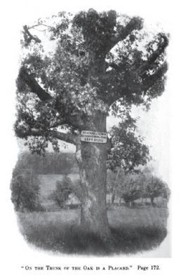 Long gone Oak Tree in Sconnelltown Photo, Click for full size