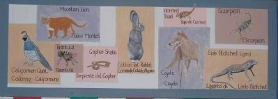 The Old Spanish Trail Marker - bottom panel 2 Photo, Click for full size