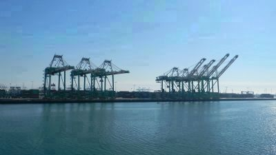 Port of Los Angeles' giant container cranes - on Terminal Island, across the harbor channel Photo, Click for full size