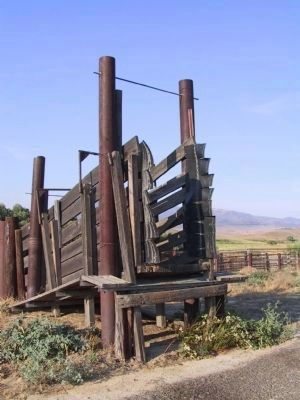 Cattle Chute image. Click for full size.