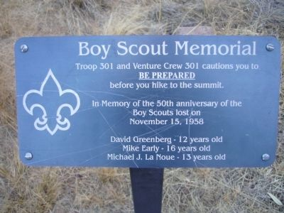Boy Scout Memorial Marker image. Click for full size.