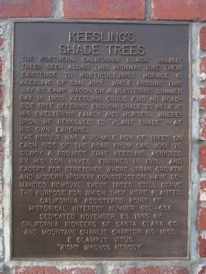 Keesling's Shade Trees Marker image. Click for full size.