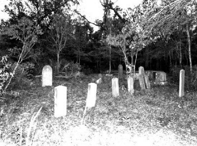 Cook's Old Field Cemetery image. Click for full size.