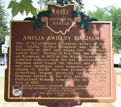 Amelia Swilley Bingham Marker image. Click for full size.