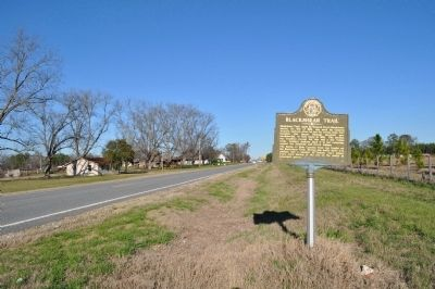 Blackshear Trail Marker image. Click for full size.