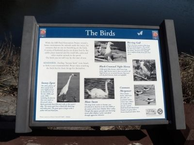 The Birds Marker image. Click for full size.