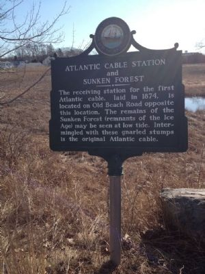 Atlantic Cable Station and Sunken Forest Marker image. Click for full size.