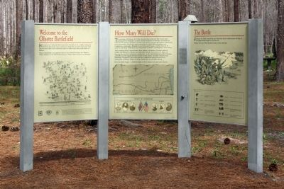 Olustee Battlefield Marker image. Click for full size.