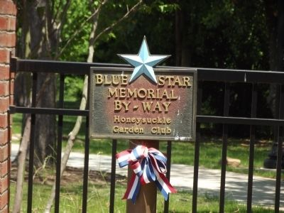 Blue Star Marker image. Click for full size.