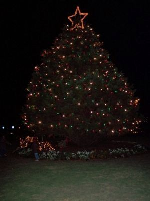 Beaufort Historic District Freedom Mall Christmas Tree image. Click for full size.