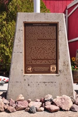 Newberry Springs Marker Photo, Click for full size