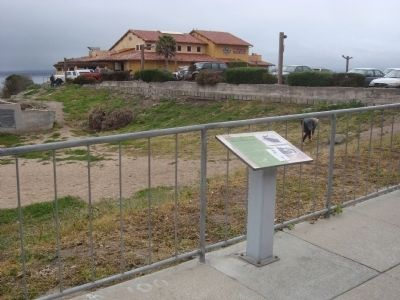 Monterey�s First Fishermen Marker image. Click for full size.