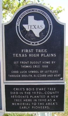 First Tree Marker image. Click for full size.