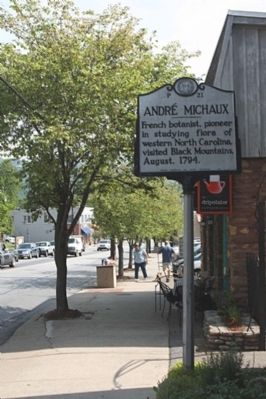Andr� Michaux Marker, looking east along State Street image. Click for full size.