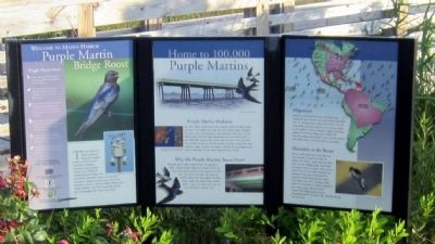 Purple Martin Bridge Roost Marker image. Click for full size.