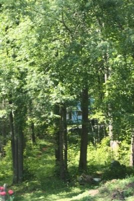 Sherrill's Inn , todays view thru the trees near Charlotte Highway from the Private entrance image. Click for full size.