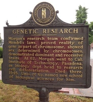 Genetic Research Marker (reverse) image. Click for full size.