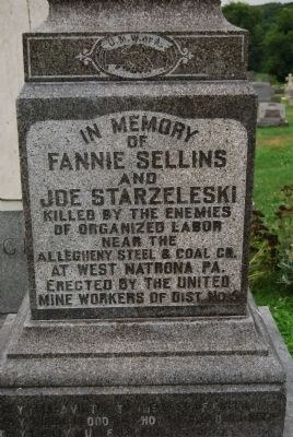 Fannie Sellins Memorial (front) image. Click for full size.
