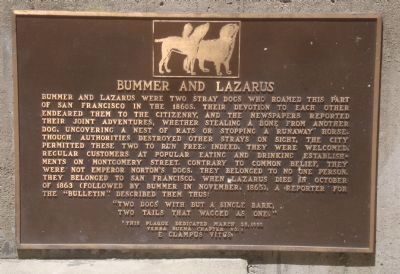 Bummer and Lazarus Marker Photo, Click for full size