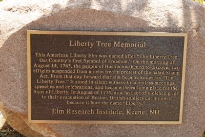 Liberty Tree Memorial Marker Photo, Click for full size