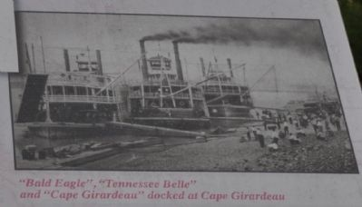 """Bald Eagle"", ""Tennessee Belle"" and ""Cape Girardeau"" docked at Cape Girardeau image. Click for full size."