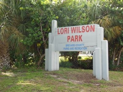 Lori Wilson Park image. Click for full size.