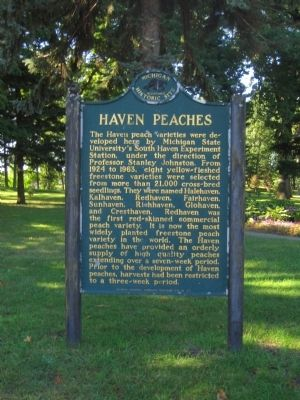 Haven Peaches Marker Photo, Click for full size