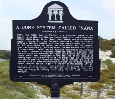 "A Dune System Called ""NaNa"" Marker Photo, Click for full size"