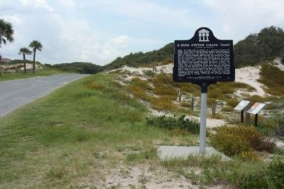 "A Dune System Called ""NaNa"" Marker seen along Ocean Blvd, looking south image. Click for full size."