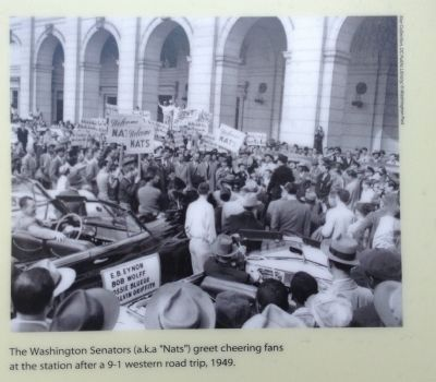Washington Senators Photo, Click for full size