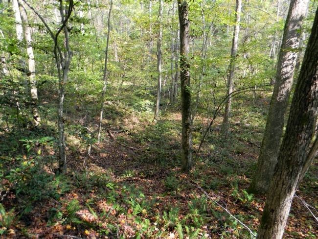 Modern day view of the Site of Spotswood�s Furnace image. Click for full size.