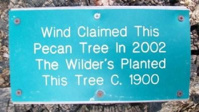 Wilder's Pecan Tree Marker Photo, Click for full size
