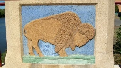 """Minisa"" Bridge American Bison Panel Photo, Click for full size"