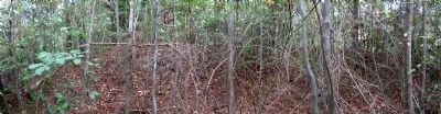 Nearby Civil War breastworks image. Click for full size.