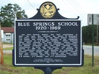Blue Springs School 1920-1969 Marker Photo, Click for full size
