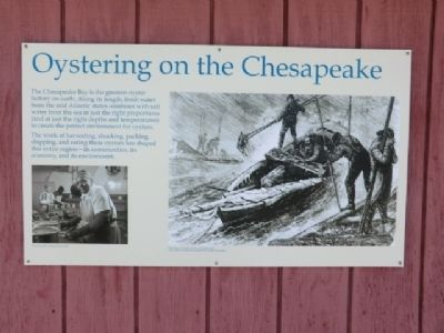 Oystering on the Chesapeake Marker image. Click for full size.