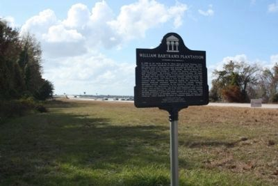 William Bartram's Plantation Marker, looking west image. Click for full size.