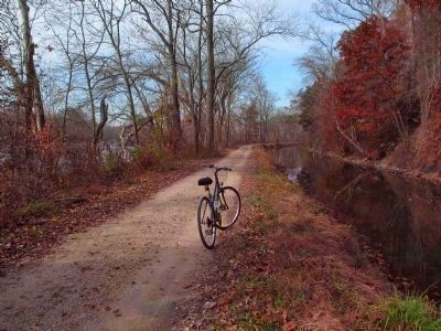 The C. & O. Canal Towpath image. Click for full size.