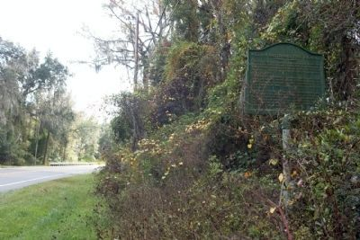 William Bartram Scenic Highway Marker looking southward image. Click for full size.