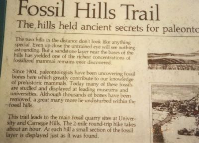 Fossil Hills Trail Marker image. Click for full size.