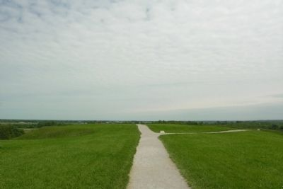 Top of Monks Mound image. Click for full size.