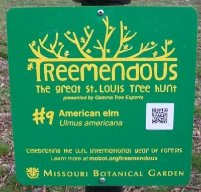 American Elm Treemendous Marker image. Click for full size.